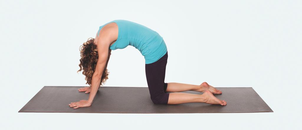 Yogaübungen für Nacken und Schultern – Yogaübung Chakravakasana Vierfüßlerstand
