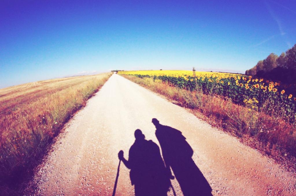 Geh mit Gott, aber geh – Die Geschichte einer Yogini auf dem Jakobsweg